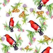 Uccelli con farfalle e fiori di campo — Foto Stock