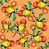 Fond de pommes — Photo
