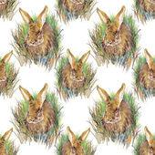 Colorful rabbit pattern — Foto de Stock