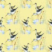 Herons in water — Stock Photo