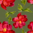Watercolor red flower — Stock Photo #50959373