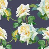 Witte rozen achtergrond — Stockfoto