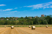 Haymaking in italian fields — Stockfoto