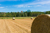 Haymaking in italian fields — Foto Stock