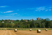 Haymaking in italian fields — Photo