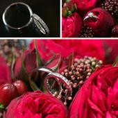 Set of wedding rings — Stock Photo