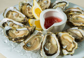 A platter of fresh organic raw oysters on ice — Stock Photo