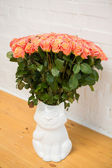 Beautiful roses in a vase-cat — Stock fotografie