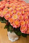 Beautiful orange rose — Stock Photo