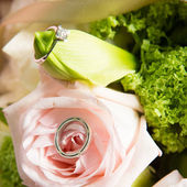 Wedding rings and beautiful flowers. — Stock Photo