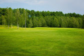 Lush fairway in the foreground contrast in the distance at a gol — Stock Photo