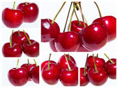Collge of organic sweet cherries isolated on a white background — Stock Photo