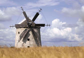 Windmolen — Stockfoto