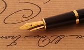 Anique fountaine-pen — Stock Photo