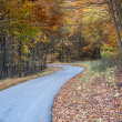 Stock Photo: Twisting Autumn road