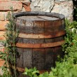 Stock Photo: Old wood cask