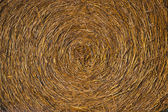 Harvested hay — Stock Photo
