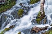 Beautiful mysterious stream — ストック写真
