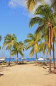 Pointe du Bout beach. Martinique — Stock Photo