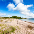 Sandy shore on an island in scandinavian archipelago — Stock Photo