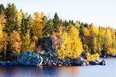 Golden autumn forest and large rocks by a lake — Stock Photo