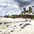 Stock Photo: Moais at Anakenbeach in Easter Island