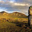 Stock Photo: One standing moai in evening sunlight in Easter Island