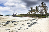 Moais at Anakena beach in Easter Island — Stock Photo