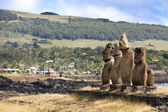 Five standing moais on shore in Hangaroa in Easter Island — Stock Photo