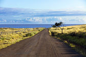 Straight gravel road in Easter Island — Stock Photo