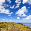 Stock Photo: Curvy gravel road in Easter Island