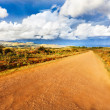 Stock Photo: Small road in Easter Island