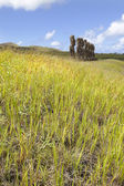 Moais behind green grass in Easter Island — Stock Photo
