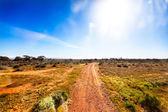 Gravel road in Australian outback in bright sunshine — Stockfoto