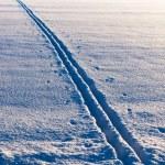 Ski tracks in evening sun — Stock Photo
