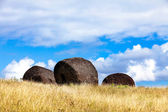 Three moai hats on field in Easter Island — Stock Photo