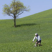 Cyclist on green countryside — Stockfoto