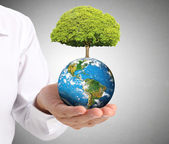 Earth in the hand — Stock Photo