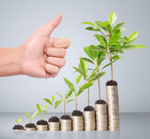 Businessman holding plant sprouting from handful of coins — Stock Photo