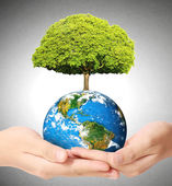 "Earth social in human hand ""Elements of this image furnished by — Stock Photo"