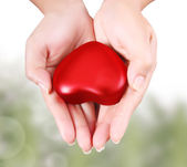 Heart in the hands — Foto de Stock