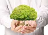 Holding tree sprouting from a handful of coins — Stock Photo