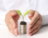 Businessman holding plant sprouting — Foto de Stock