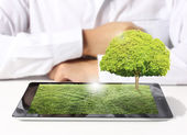 Tablet computer with grass field and tree — Stock Photo