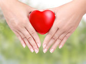 Heart in the hands — Stock Photo