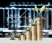 Plant on gold coins and graph them  — Stock Photo