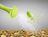 Watering can pouring molten gold  gold coins  — Stock Photo