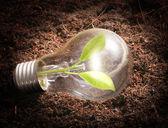 Energooszczędne żarówki — Zdjęcie stockowe