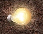 Energy saving light bulb  — Stock Photo