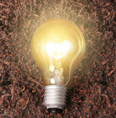 Lâmpada de poupança de energia — Foto Stock